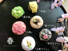 【 春 】6個入 高級 上生菓子 練り切り 期間限定 お取り寄せ 個包装 送料無料