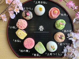 【 春 】10個入 高級 上生菓子 練り切り 期間限定 お取り寄せ 個包装 送料無料