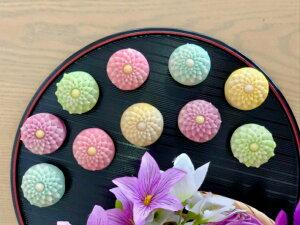 【 菊 】10個入 高級 上生菓子 練り切り 期間限定 お取り寄せ 個包装 送料無料