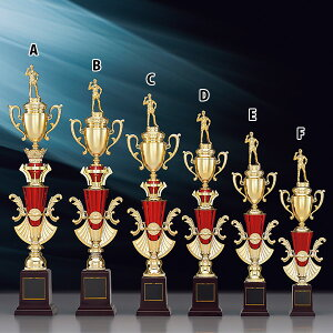 トロフィー T8827C ★高さ560mm《B-1》選べる競技108種類★名入れ彫刻無料 ゴルフコンペ 野球 サッカー バレー バスケットボール スポーツ大会 優勝記念品