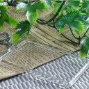 ★即納【ハメパチ】自分で作るオリジナル写真入りストラップ 手作りキット カードサイズ ナスカンキーホルダー 100個入り 【お買い…