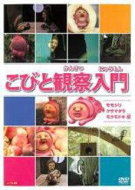 【中古】DVD▼こびと観察入門 モモジリ クサマダラ モクモドキ 編▽レンタル落ち