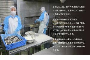【真魚亭】あかにし貝10パックセット冷凍パック海鮮湯通し業務用お得用内祝いギフト詰め合わせグルメお歳暮おかずおせちアカニシ貝赤西貝