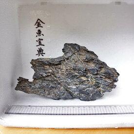 【金魚宝典】昇竜石(22cm+−)☆天然石です!☆