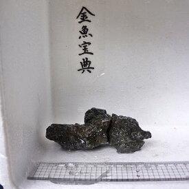 【金魚宝典】昇竜石(12cm+−)☆天然石です!☆