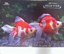 2019年金魚カレンダー