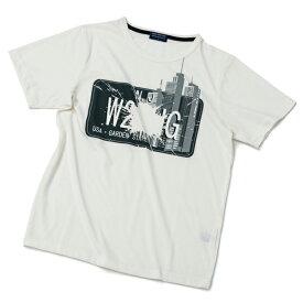 Tシャツ プリント 大きいサイズ クルーネック ブランド 半袖 メンズ 吸汗 速乾 加工 半袖Tシャツ 3L/4Lサイズ キレイ系Tシャツ・T/C・65/35 【メール便 送料無料・あす楽お急ぎ運送便選択可能】