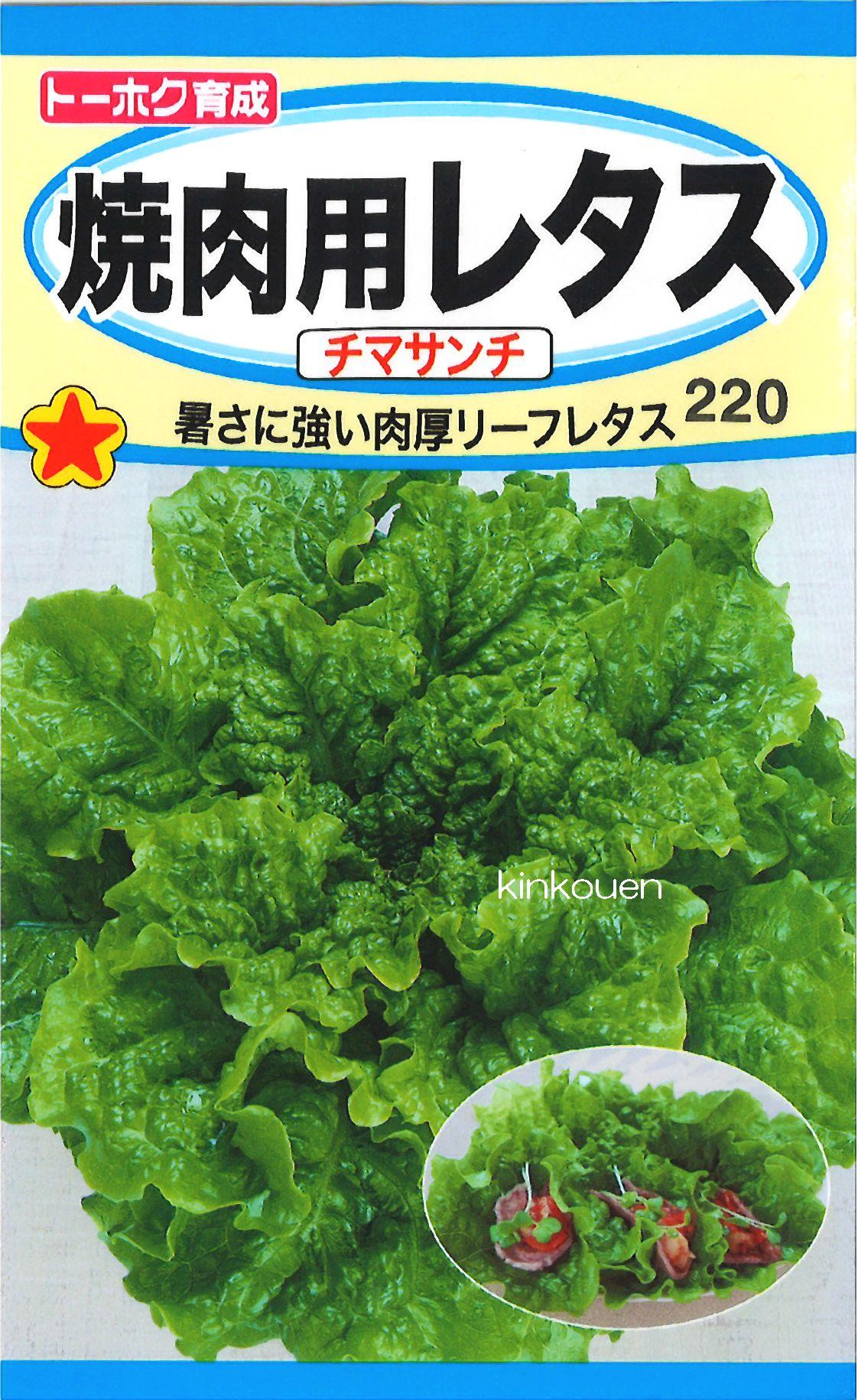 【代引不可】【5袋まで送料80円】□焼肉用レタスチマサンチ