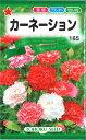 【代引不可】【送料5袋まで80円】 □カーネーション