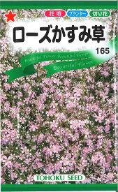 【代引不可】【送料5袋まで80円】 □ローズかすみ草