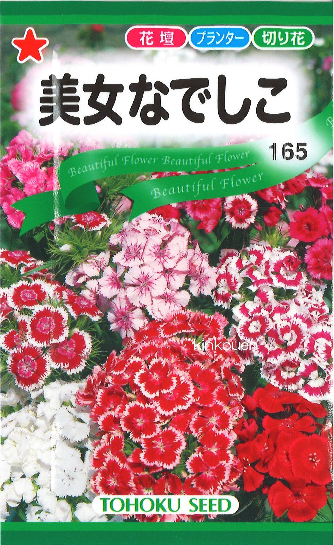 【代引不可】【5袋まで送料80円】 □美女なでしこ