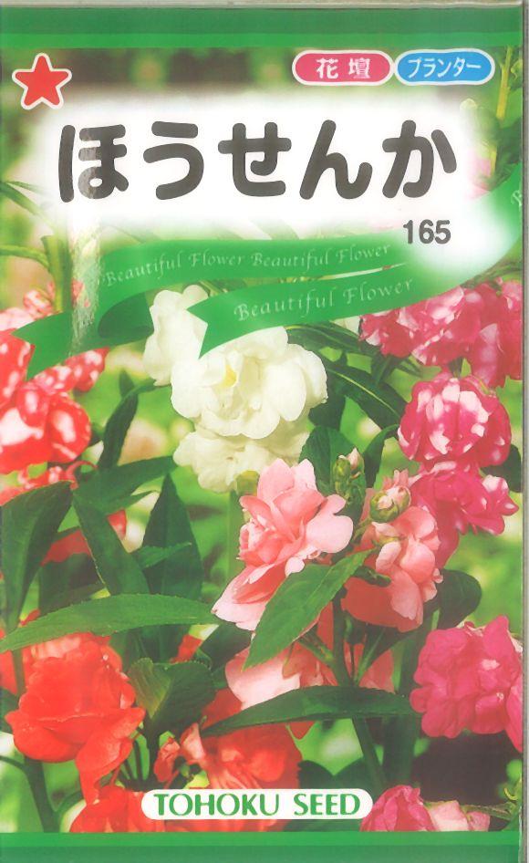【代引不可】【5袋まで送料80円】 □ほうせんか