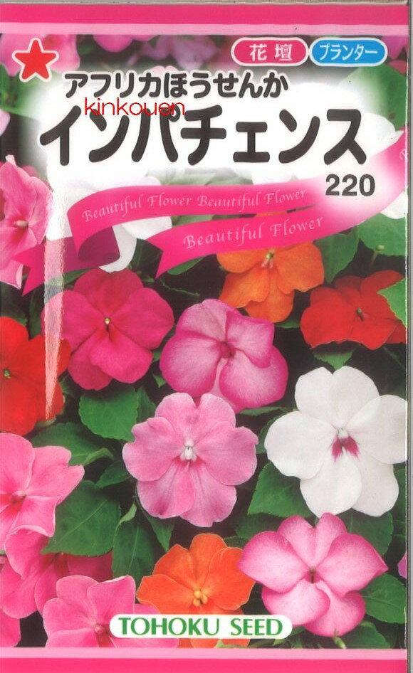 【代引不可】【5袋まで送料80円】 □インパチェンス