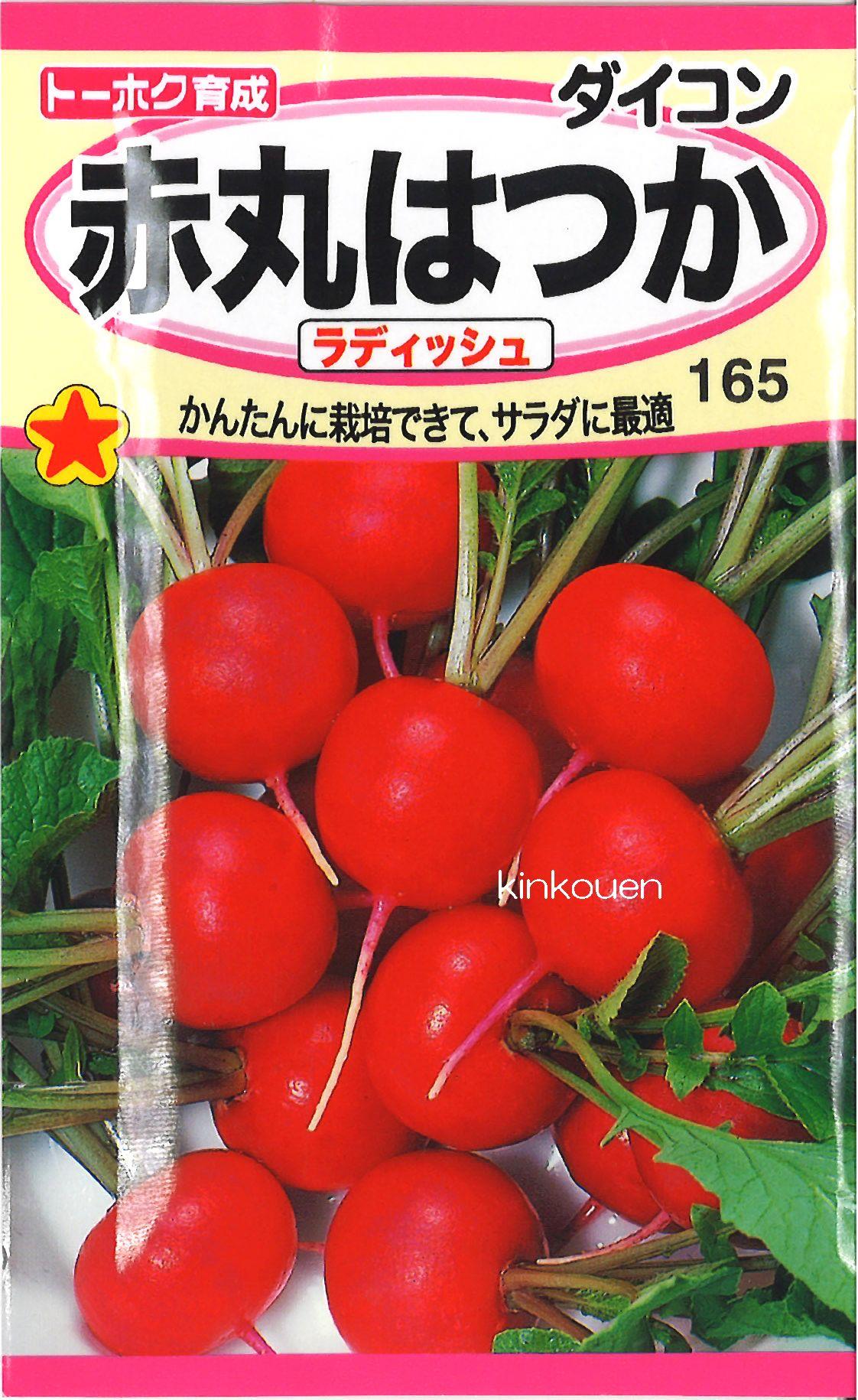 【代引不可】【5袋まで送料80円】□赤丸はつかラディッシュ