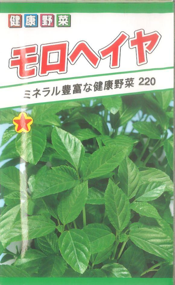 【代引不可】【5袋まで送料80円】 □モロヘイヤ
