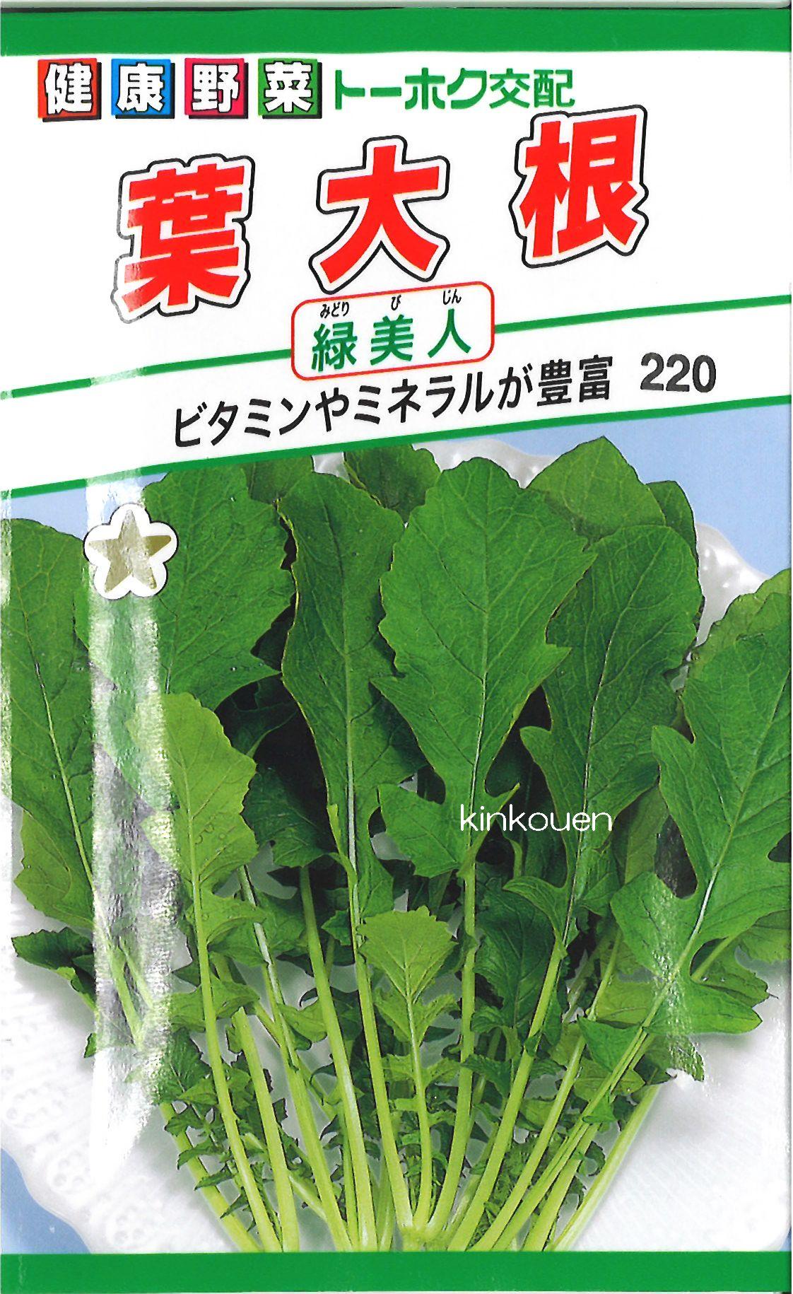 【代引不可】【5袋まで送料80円】 □葉大根緑美人