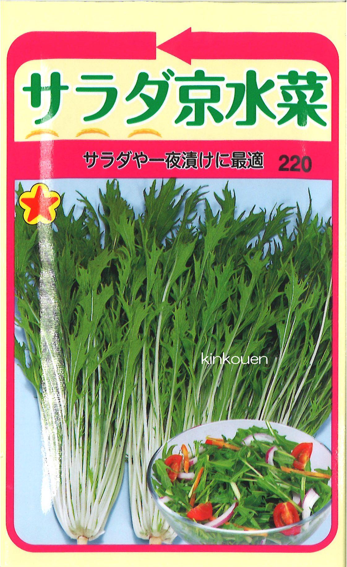 《代引不可》《5袋まで送料80円》 □サラダ京水菜