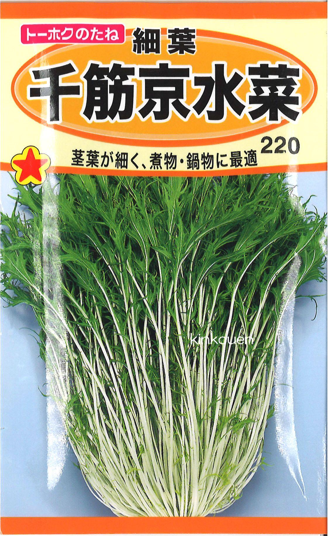 【代引不可】【5袋まで送料80円】□細葉千筋京水菜