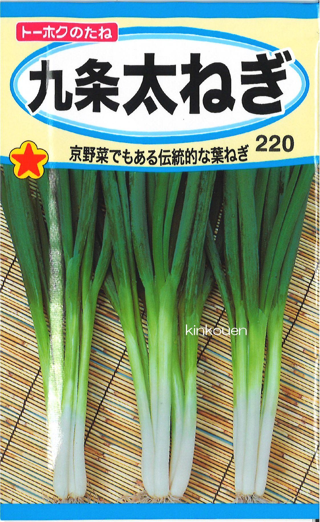 【代引不可】【5袋まで送料80円】□九条太ねぎ