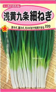 4-1-6【代引不可】【送料5袋まで80円】 □浅黄九条細ねぎ ■ seed たね tane 種 種子 ネギの種
