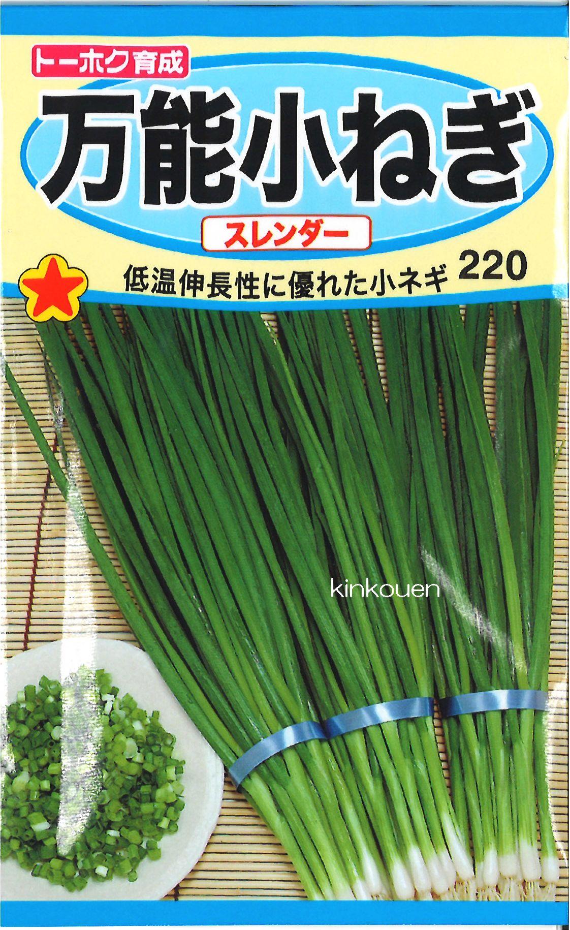 【代引不可】【5袋まで送料80円】□万能小ねぎスレンダー