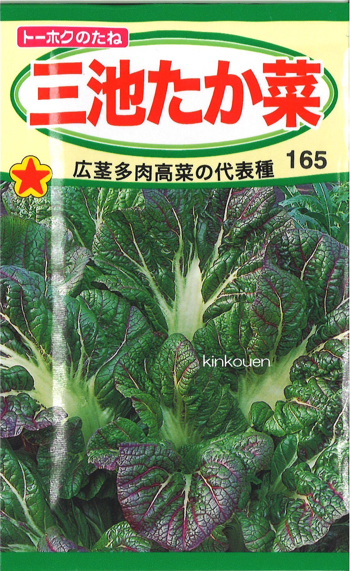 【代引不可】【5袋まで送料80円】□三池たか菜