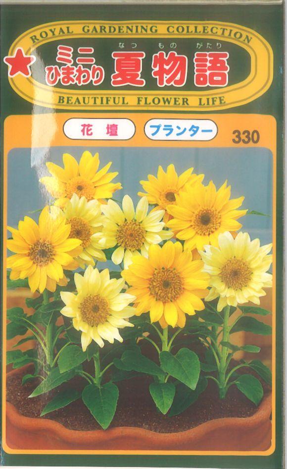 【代引不可】【5袋まで送料80円】 □ミニひまわり夏物語