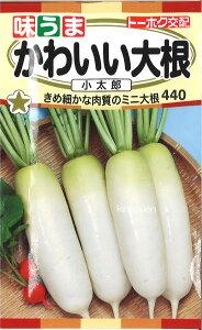 3-8-2【代引不可】【送料5袋まで80円】 □かわいい大根 小太郎 ■ seed たね tane 種 種子 大根 カブの種
