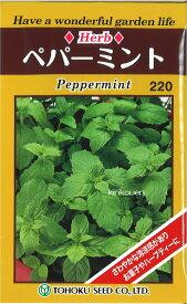 4-6-5【代引不可】【送料5袋まで80円】 □ペパーミント ■ seed たね tane 種 種子 ハーブの種