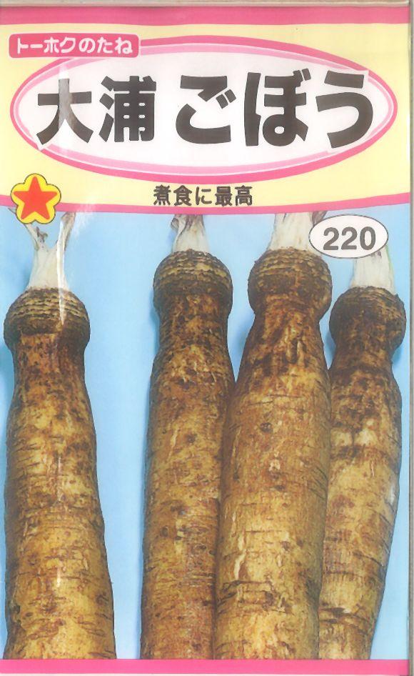 【代引不可】【5袋まで送料80円】 □大浦ごぼう