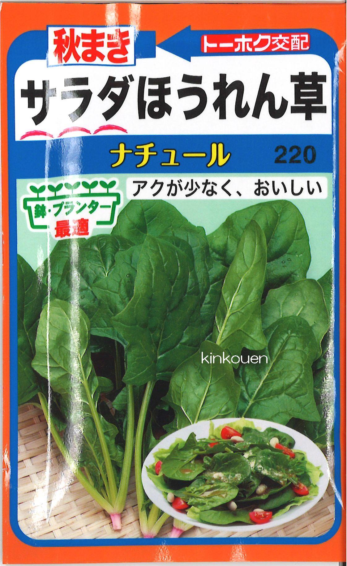 【代引不可】【5袋まで送料80円】□秋まきサラダほうれん草ナチュール