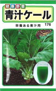 4-9-9【代引不可】【送料5袋まで80円】 □青汁ケール ■ seed たね tane 種 種子 葉野菜 他の種