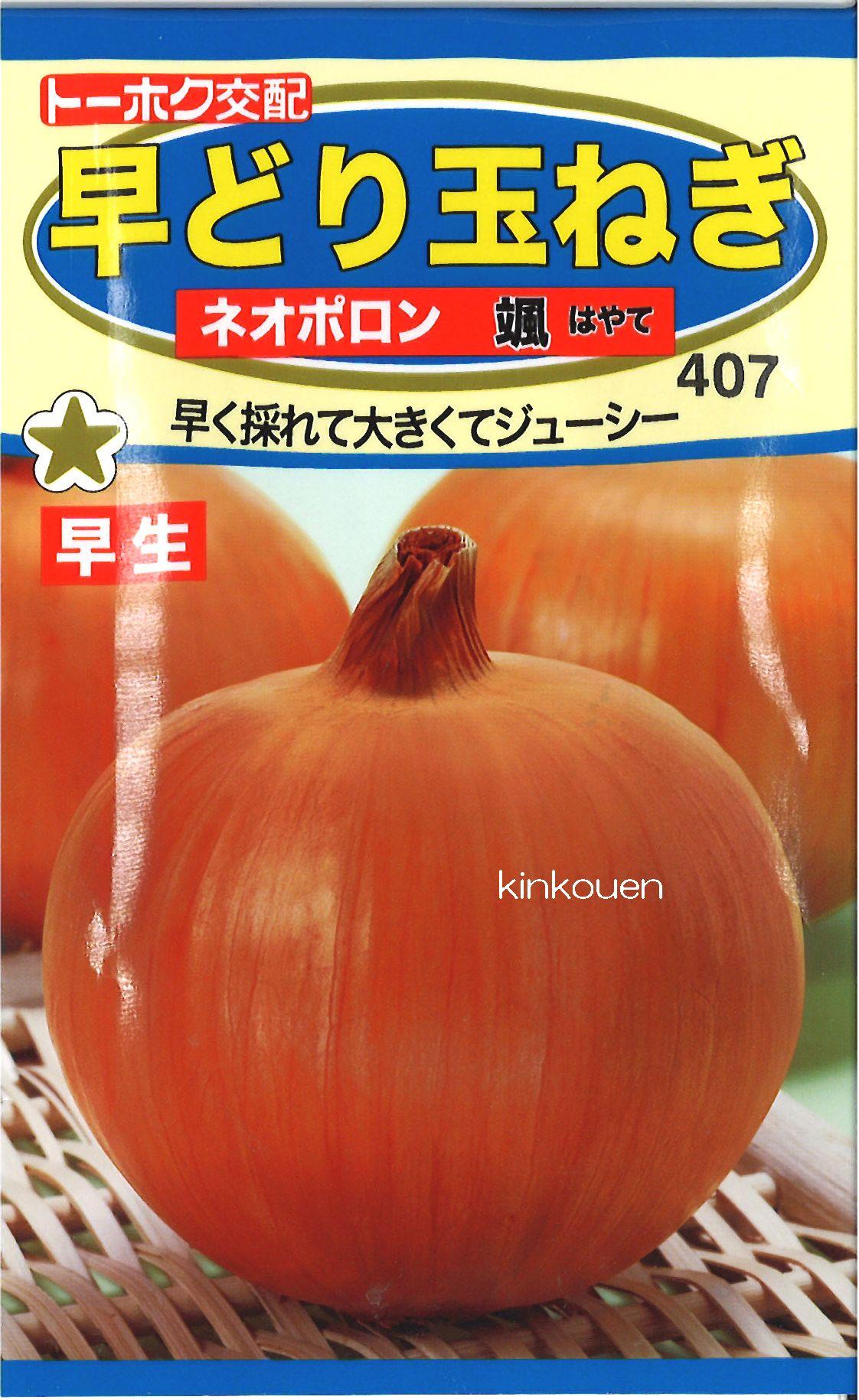 【代引不可】【5袋まで送料80円】□早どり玉ねぎネオポロン颯