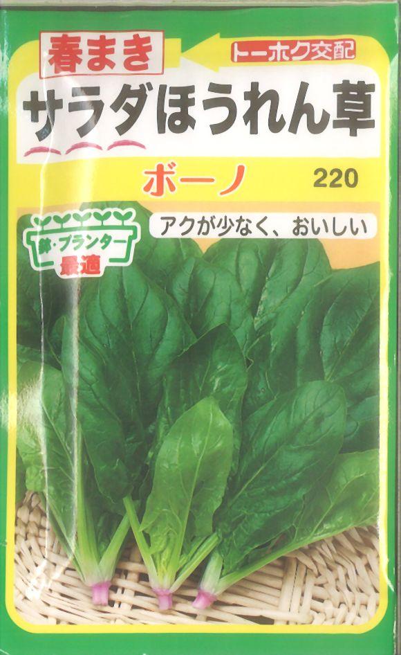 【代引不可】【5袋まで送料80円】 □春まきサラダほうれん草ボーノ
