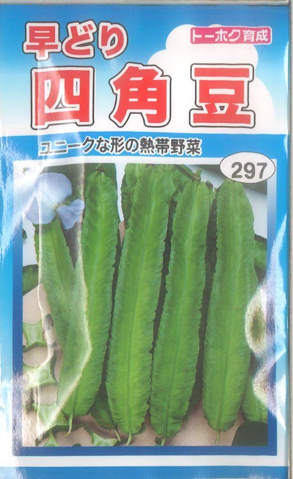 【代引不可】【5袋まで送料80円】 □早どり四角豆