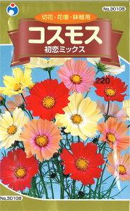 2-2-5【代引不可】【送料5袋まで80円】 □コスモス 初恋ミックス ■ seed たね tane 種 種子 花の種