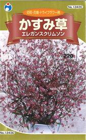 【代引不可】【送料5袋まで80円】 □かすみ草 エレガンスクリムソン
