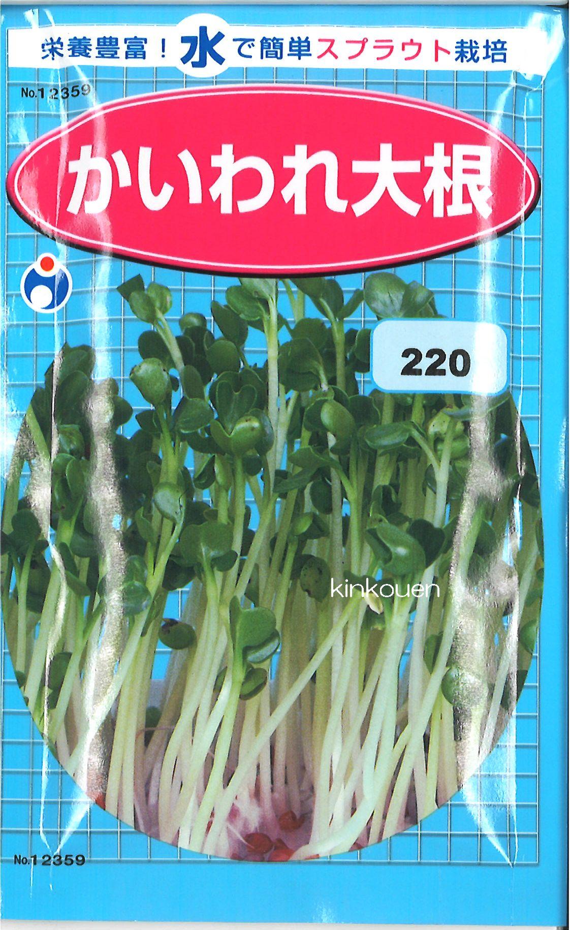 【代引不可】【5袋まで送料80円】 □ カイワレダイコン かいわれ大根