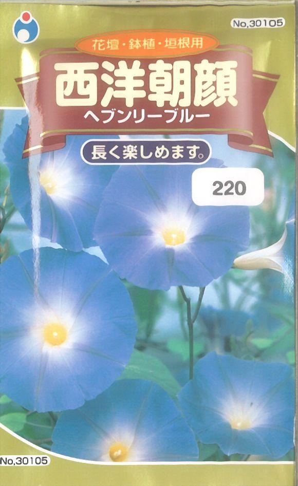 ≪代引不可≫≪5袋まで送料80円≫ □アサガオ西洋朝顔ヘブンリーブルー