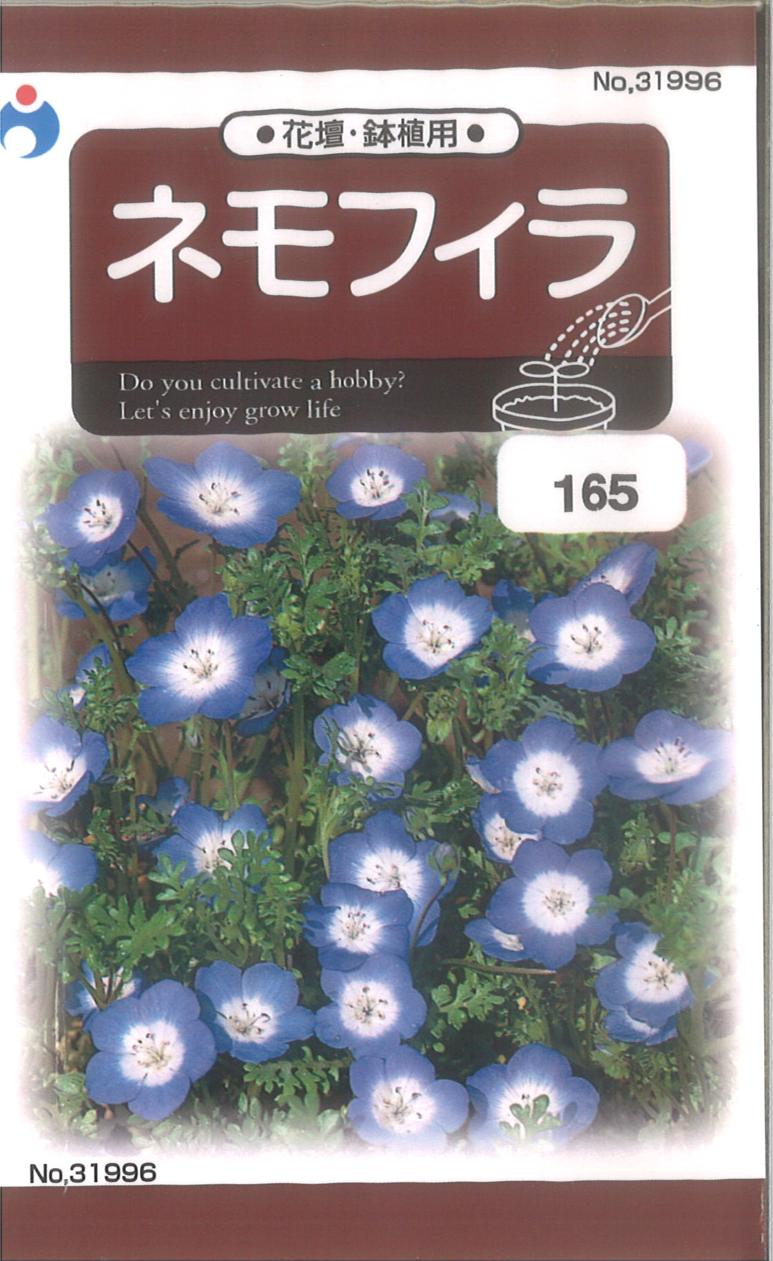 【代引不可】【5袋まで送料80円】 □ ネモフィラ