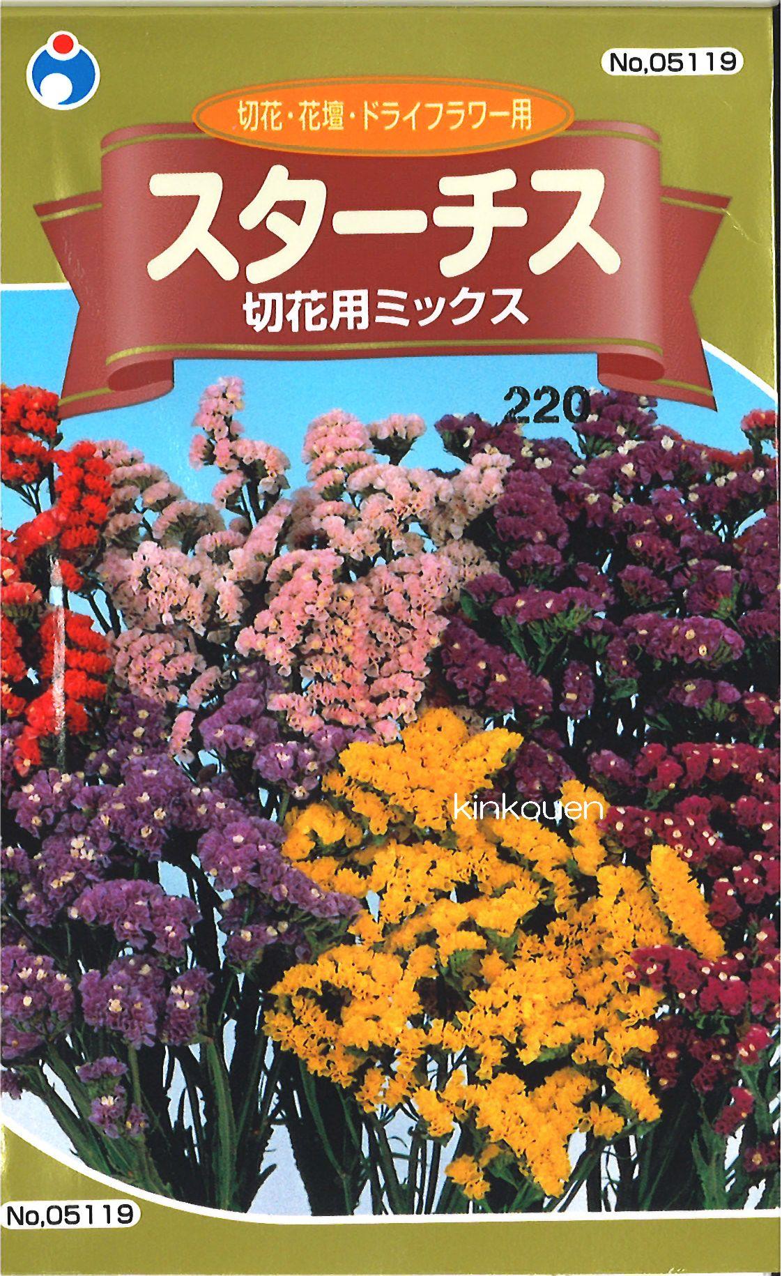 【代引不可】【5袋まで送料80円】□スターチス 切花用ミックス