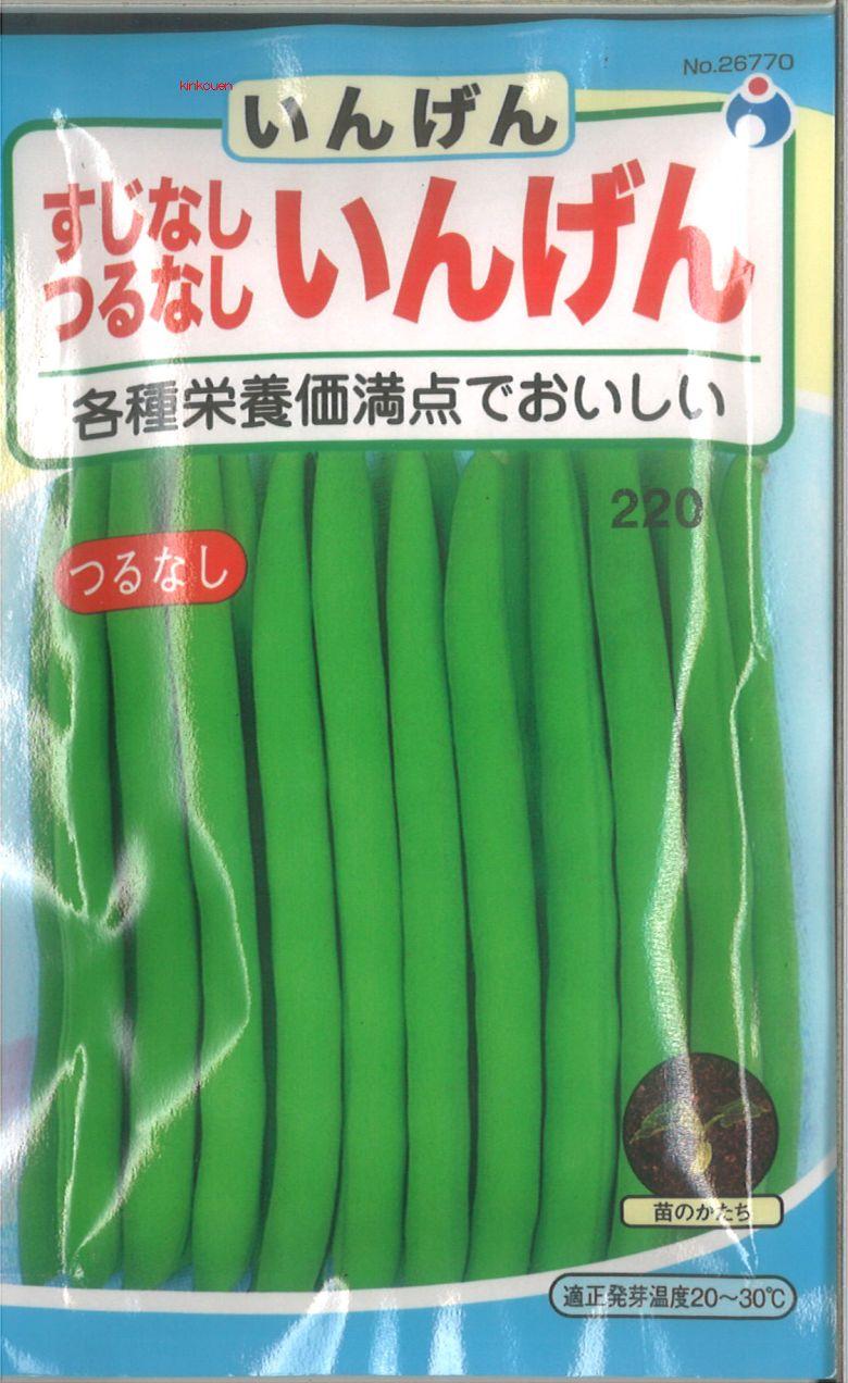 ≪代引不可≫≪5袋まで送料80円≫ □すじなしつるなしいんげん