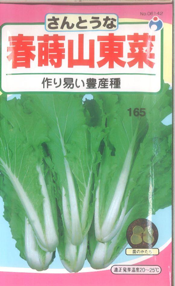 ≪代引不可≫≪5袋まで送料80円≫ □サントウナ春蒔山東菜