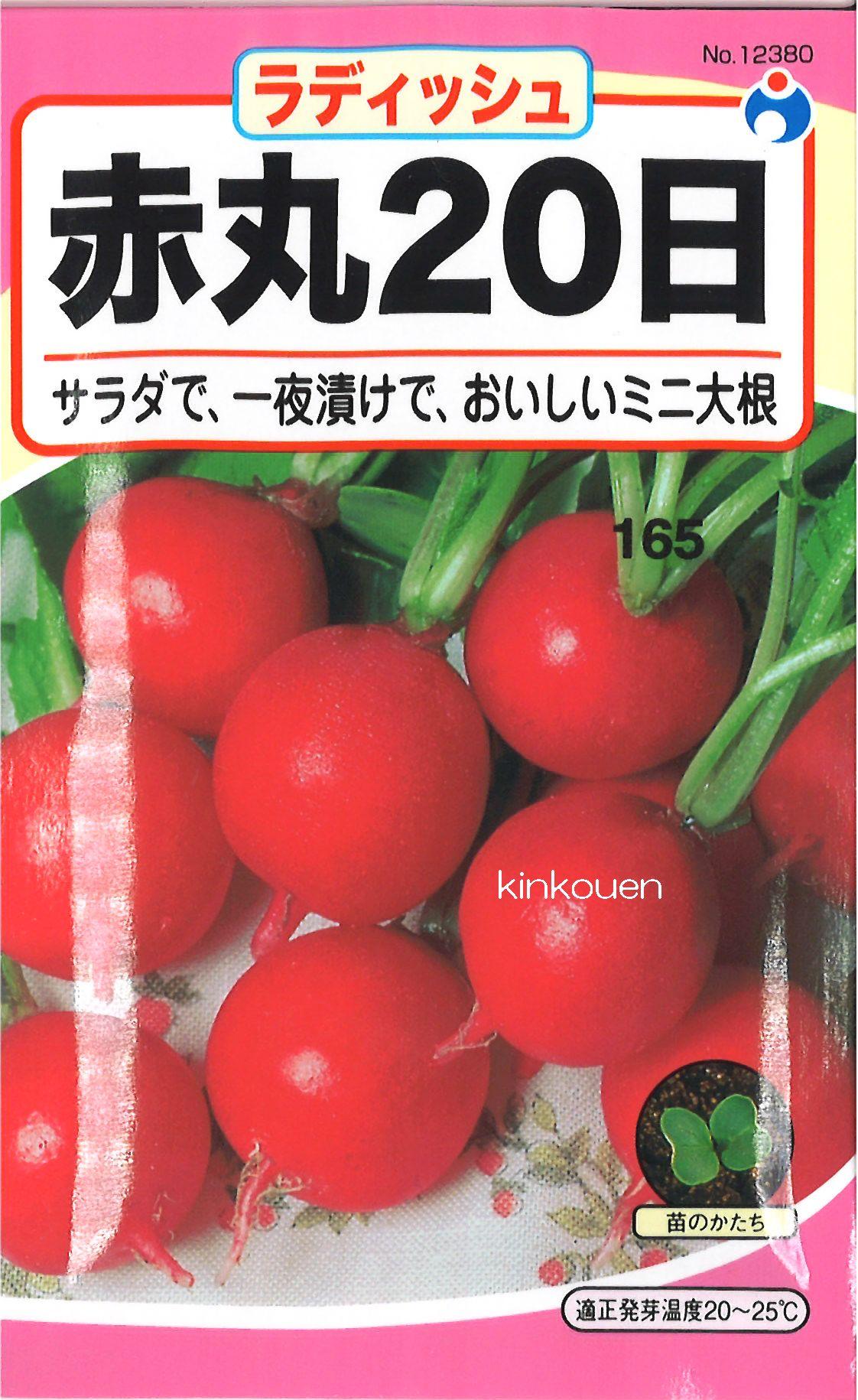 ≪代引不可≫≪5袋まで送料80円≫ □ラディッシュ赤丸20日大根コメット
