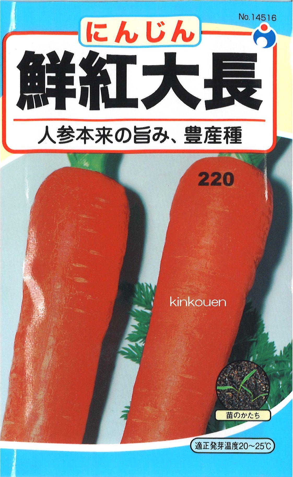 ≪代引不可≫≪5袋まで送料80円≫ □鮮紅大長人参