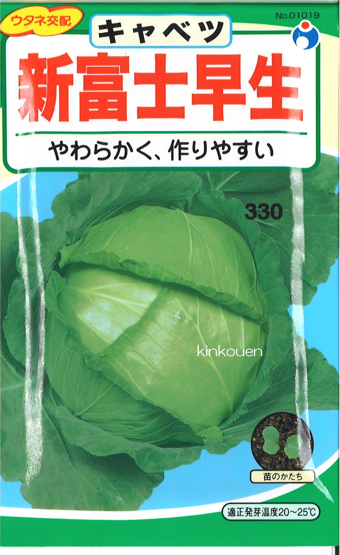 【代引不可】【5袋まで送料80円】□新富士早生キャベツ