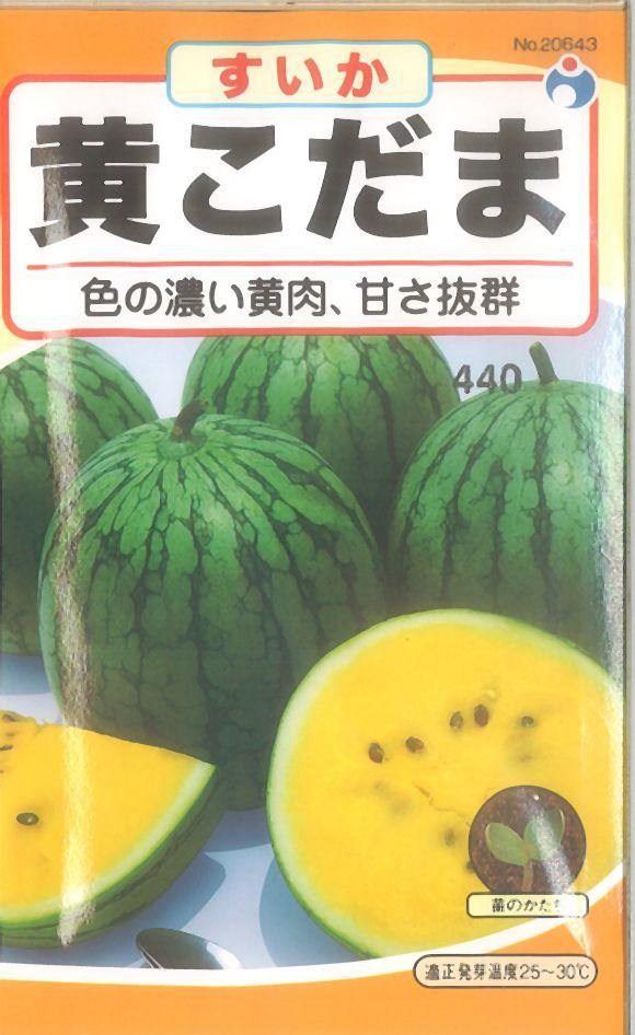 ≪代引不可≫≪5袋まで送料80円≫ □スイカ黄こだま西瓜