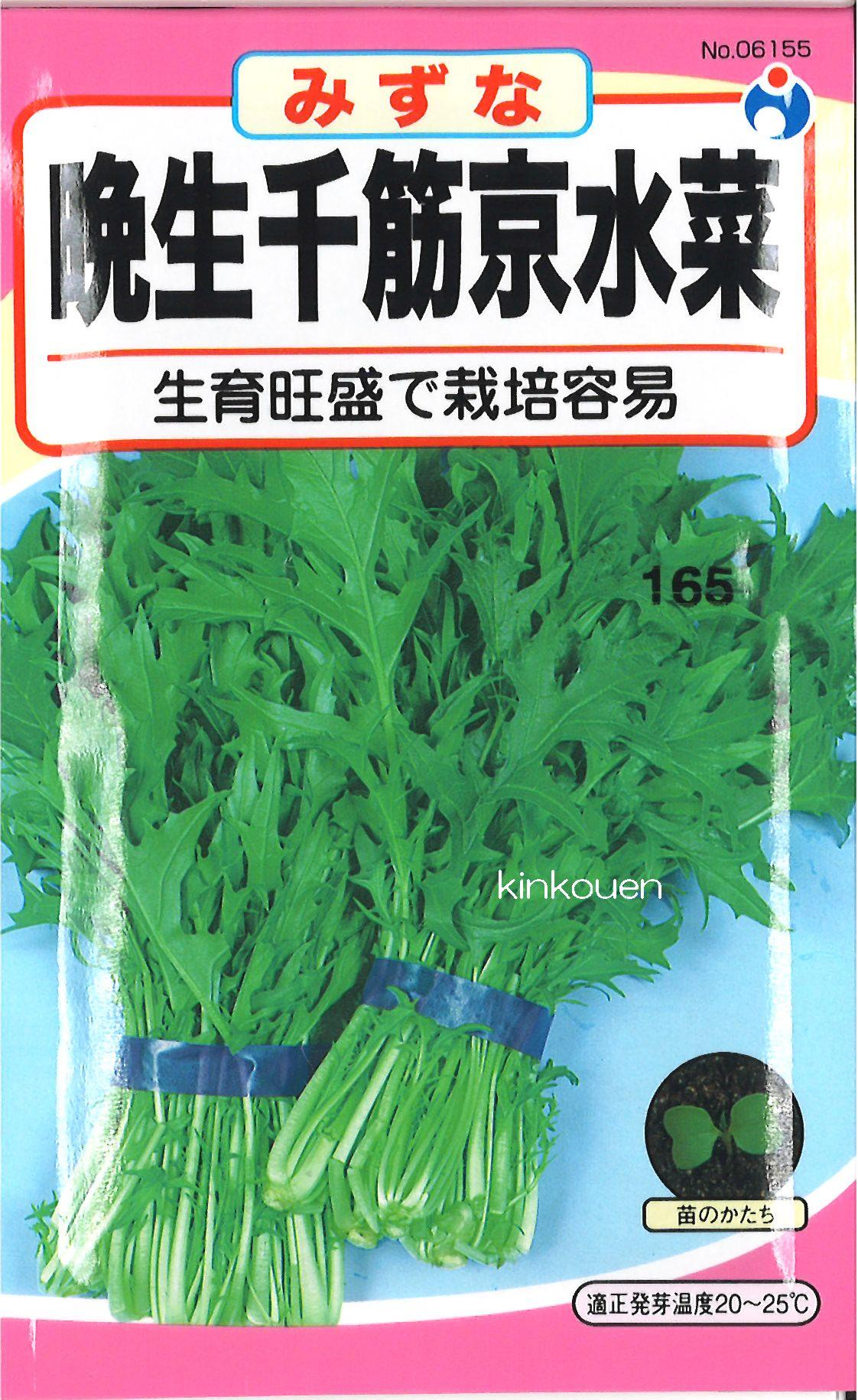 【代引不可】【5袋まで送料80円】□晩生千筋京水菜