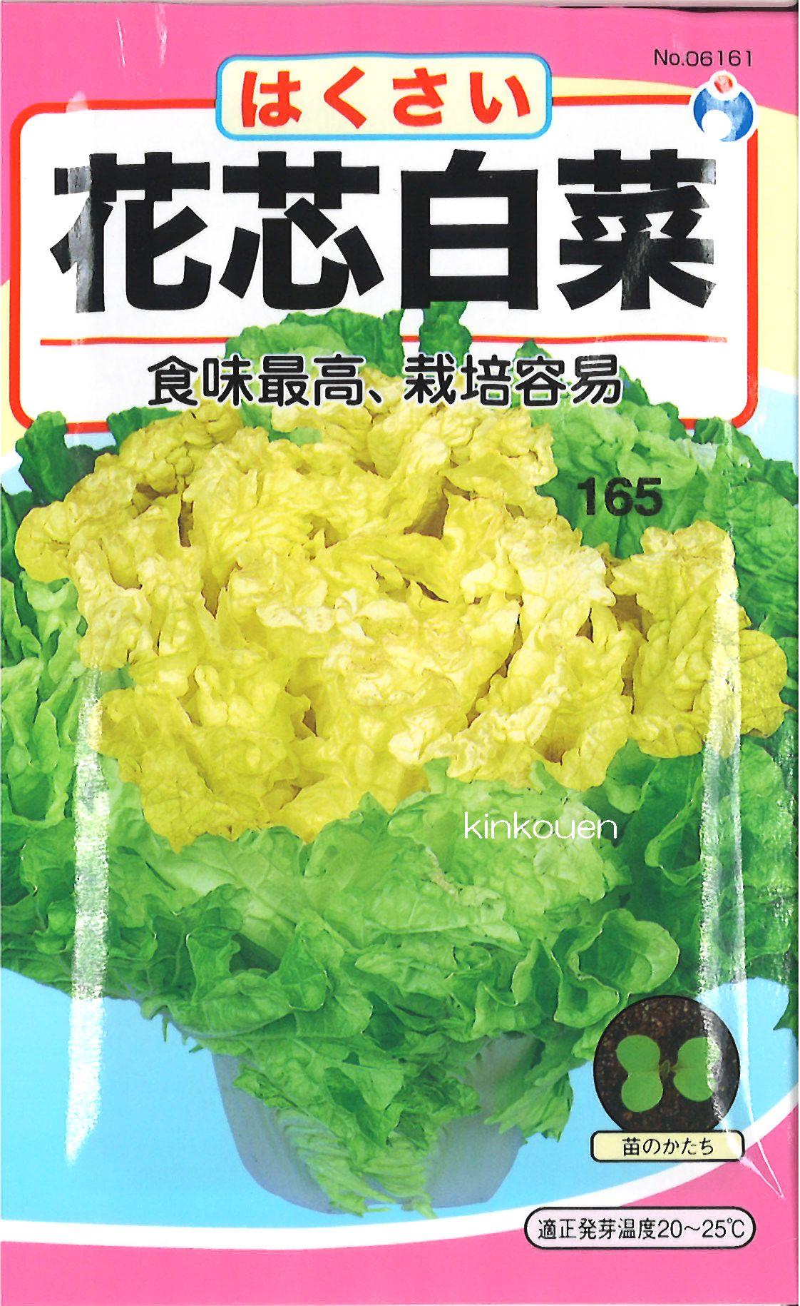 【代引不可】【5袋まで送料80円】 □ ハクサイ 花芯白菜