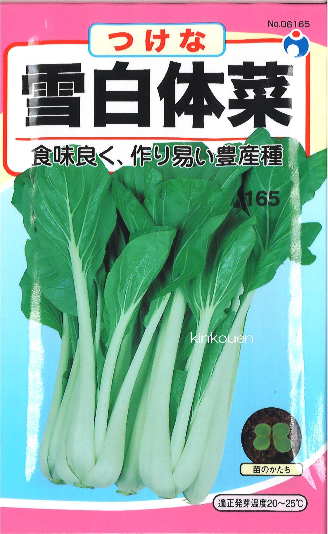 【代引不可】【5袋まで送料80円】 □ ツケナ 雪白体菜 しゃくし菜 ひら菜